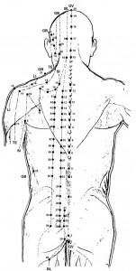punti-agopuntura-schiena